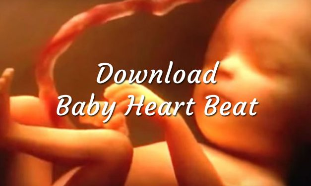 Download Baby Heartbeat Womb Sounds
