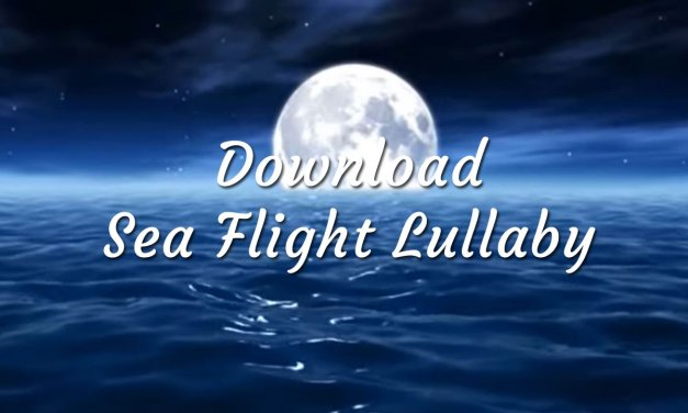 Download Sea & Moonlight Lullaby