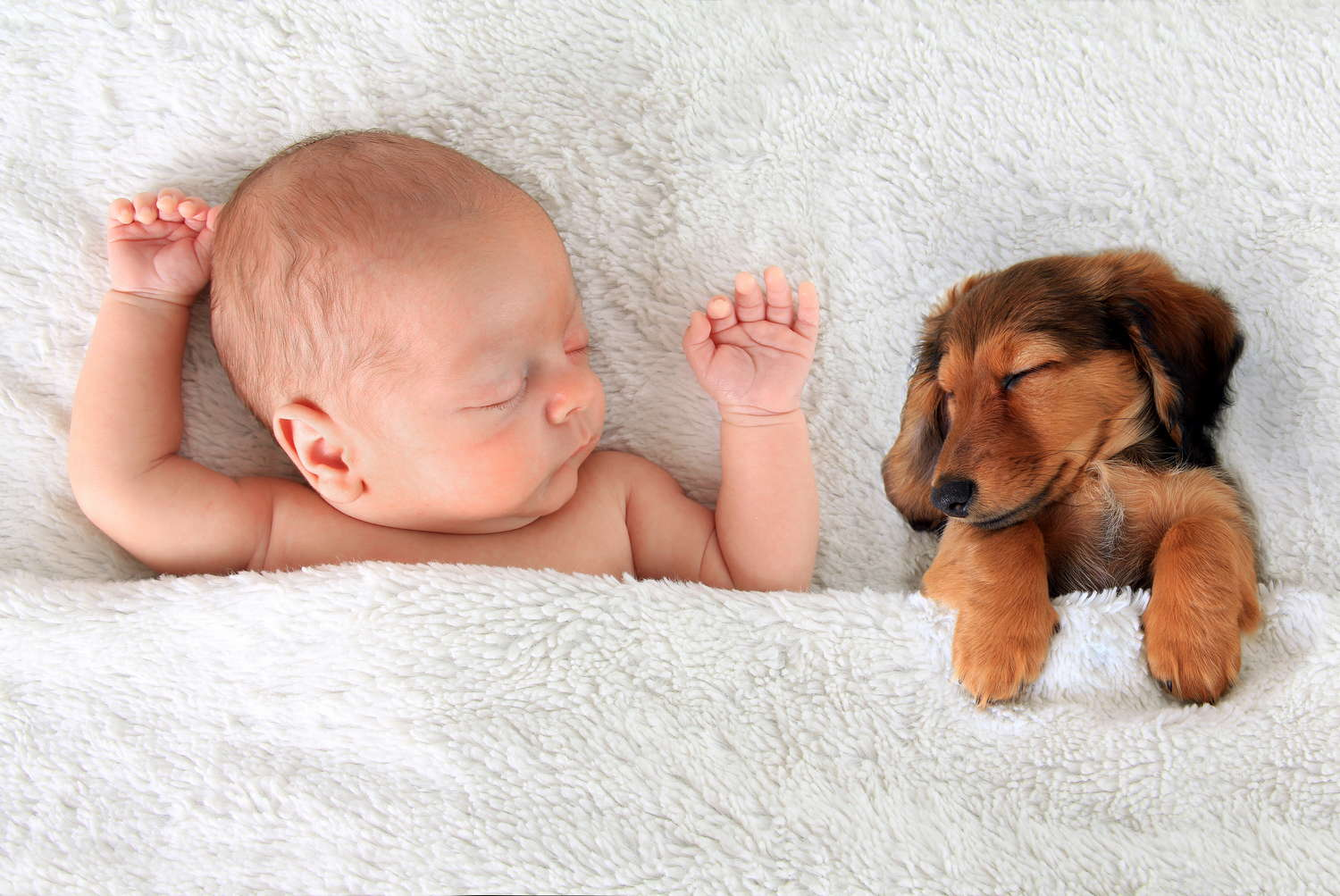 baby and puppy asleep
