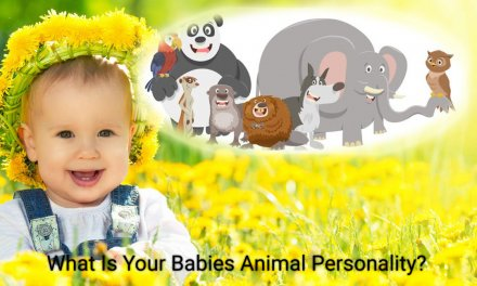 What Is Your Child's Animal Personality?