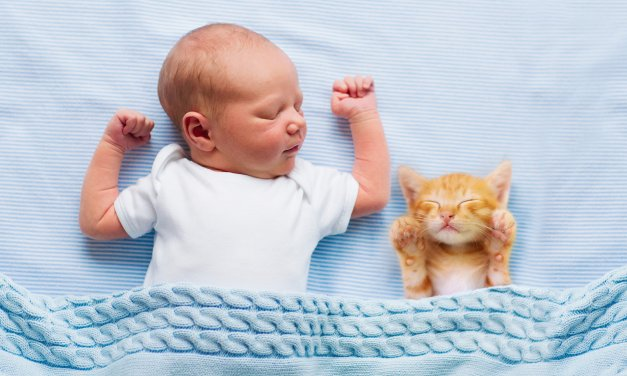 Baby Sleep Guide For Peaceful Sleep