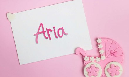 Aria: Girls Baby Name Meaning