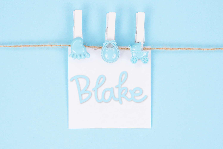 Blake Baby Name