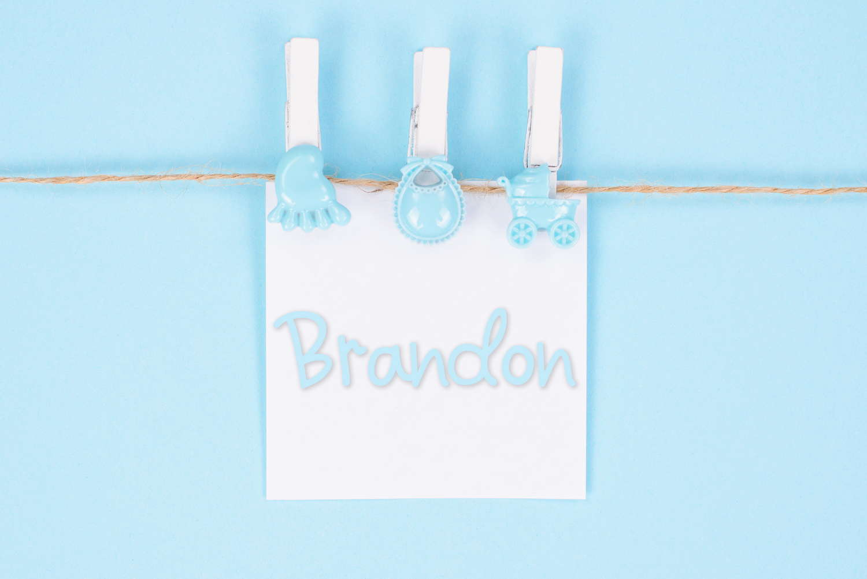 Brandon Baby Name