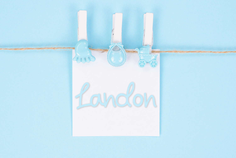 Landon Baby Name