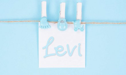 Levi: Boys Baby Name Meaning