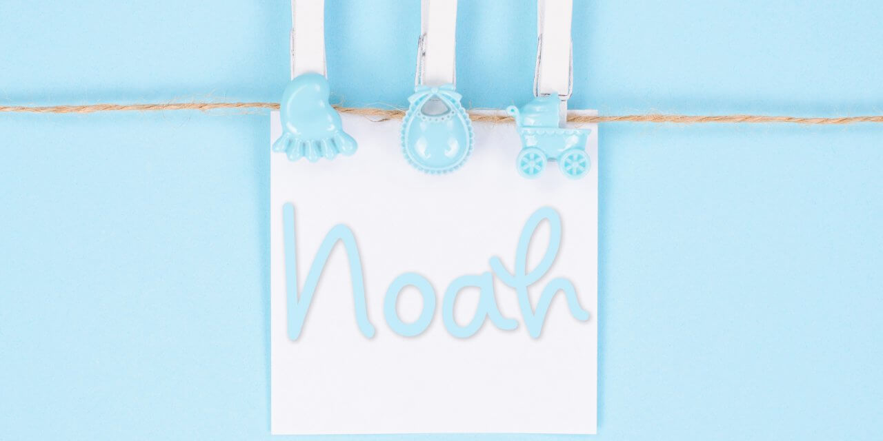 Noah : Boys Baby Name Meaning